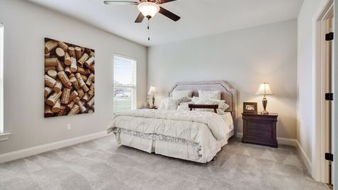 DSLD Homes - Camellia IV A Open Floor Plan - Master Bedroom Image