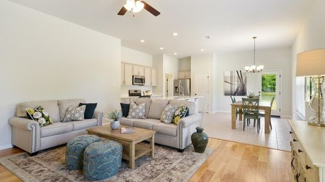 Living Room with  Decor- Hunters Trace - DSLD Homes Baton Rouge