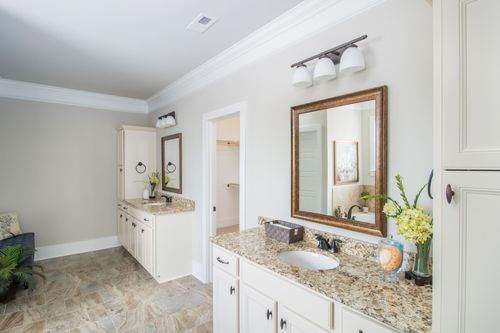 Nature's Trail - Model Home Master Bathroom - DSLD Homes - Huntsville, Alabama