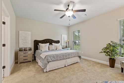Hidden Lakes Estates - Cognac IV B - Denham Springs, LA - DSLD Homes