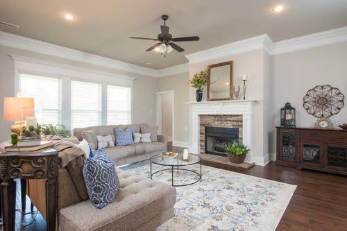 Nature's Trail - Model Home Living Room - DSLD Homes  Madison, AL