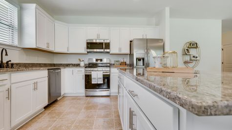 Kitchen in  Model Home - DSLD Homes - Island Trace in Ponchatoula