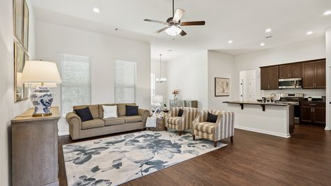 Model Home Living Room - Gray's Creek Community - DSLD Homes - Denham Springs