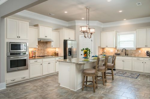 Nature's Trail - Model Home Kitchen - DSLD Homes - Madison, AL