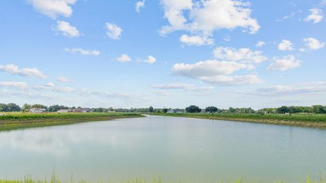 Community Pond - The Reserve at Conway Community - DSLD Homes - Baton Rouge