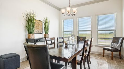 Fairhaven - Youngsville, LA - Harmand II A - DSLD Homes - Model Home