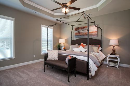 Nature's Cove - Model Home Master Bedroom - DSLD Homes - Collinswood II A - Owens Cross Roads, AL