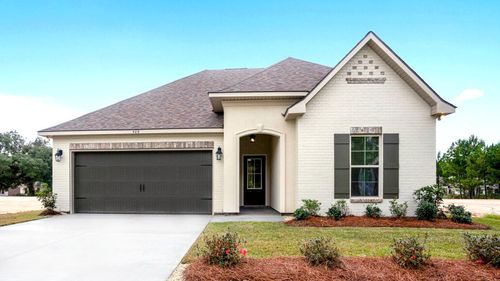 Front of Model Home- DSLD Homes - Alexander Ridge in Covington