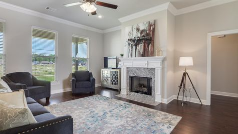 Living Room with Decor - Nickens Lake- DSLD Homes Denham Springs