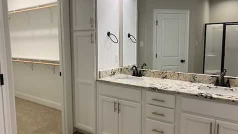 Lafayette Place Model Home- Alabama- DSLD Homes - Master bathroom