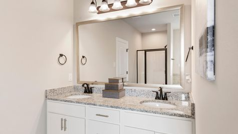 Briar's Cove - DSLD Homes - Azalea III A - Lafayette, LA - Model Home Master Bathroom