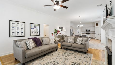 Sugar Ridge Model Home Living Room - Sugar Ridge Community - DSLD Homes - Lafayette