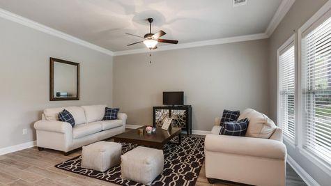 Living Room in Model Home - DSLD Homes - Audubon Trail in Covington