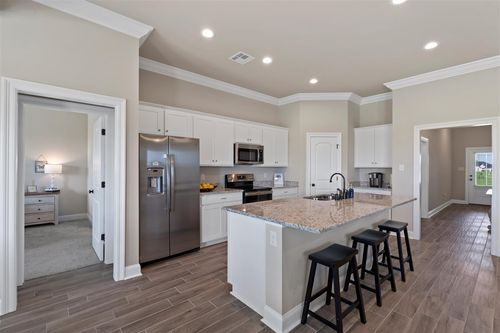 Somerset Park Model Home - Trillium III A - Sterlington, LA - DSLD Homes
