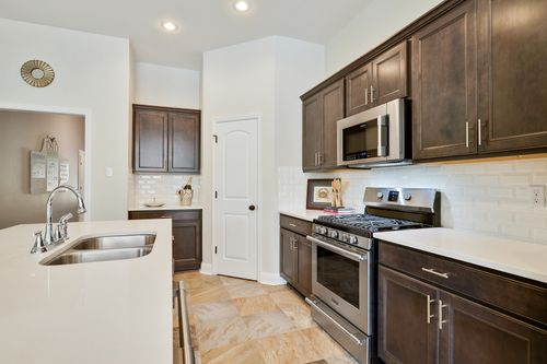 Tiger Trace - Model Home Kitchen - DSLD Home