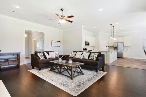 Nature's Trail - Model Home Living Room - DSLD Homes - Biloxi, MS