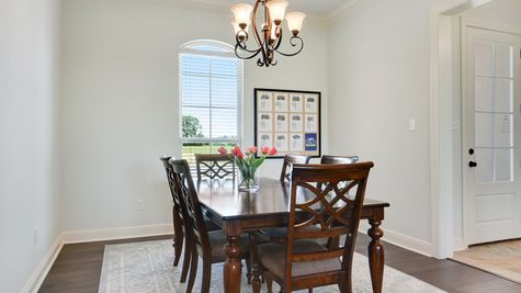 Model Home - DSLD Homes - Paige Place in Broussard