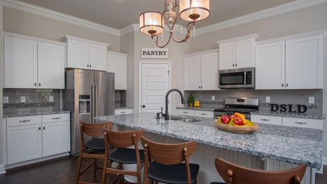 White Kitchen Cabinets Stainless Steel Appliances - Nature's Cove - DSLD Homes Huntsville