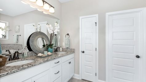 Meadow Crest Model Home Master Bathroom - Collinswood II G - DSLD Homes - Hazel Green, AL