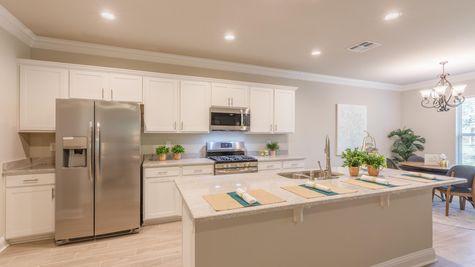 Summer Gardens Model Home - DSLD Homes-Baton Rouge, LA-Navona III B