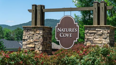 Front Entrance - Nature's Cove - DSLD Homes Huntsville
