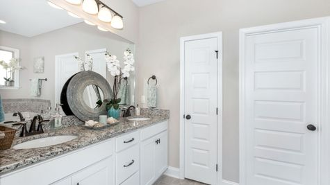 Meadow Crest Model Home Pictures -  Collinswood II H - DSLD Homes - Master Bathroom Suite
