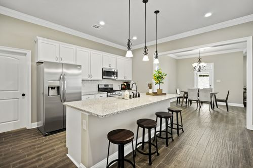Willow Heights - Model Home Kitchen - DSLD Homes - Violet III A - Bossier City, LA