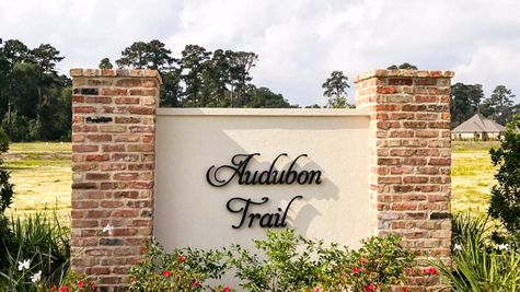 Community Sign - DSLD Homes - Audubon Trail in Covington