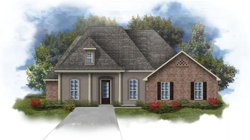 Raphael III D Open Floorplan Elevation Image - DSLD Homes