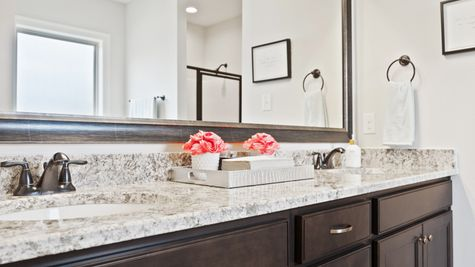 Master Bathroom in Model Home - DSLD Homes - Alexander Ridge in Covington