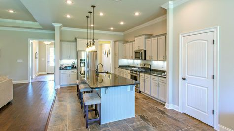 Kitchen in Model Home - DSLD Homes - Spanish Fort - Highland Park