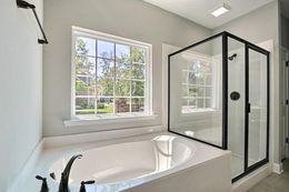 Owner's bath with marble shower and glass between the tub and shower