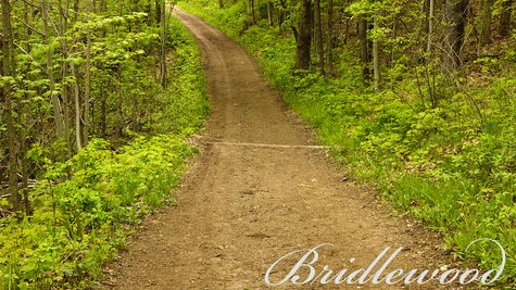 Walking path at Pike Lake, Hartford
