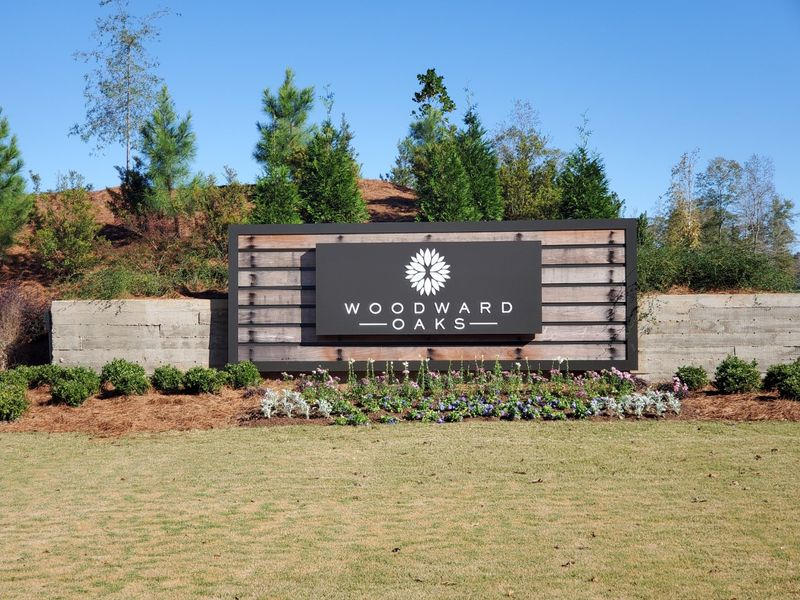 What's New in Woodward Oaks? – A Development Update on the New Home Community in Auburn, Alabama