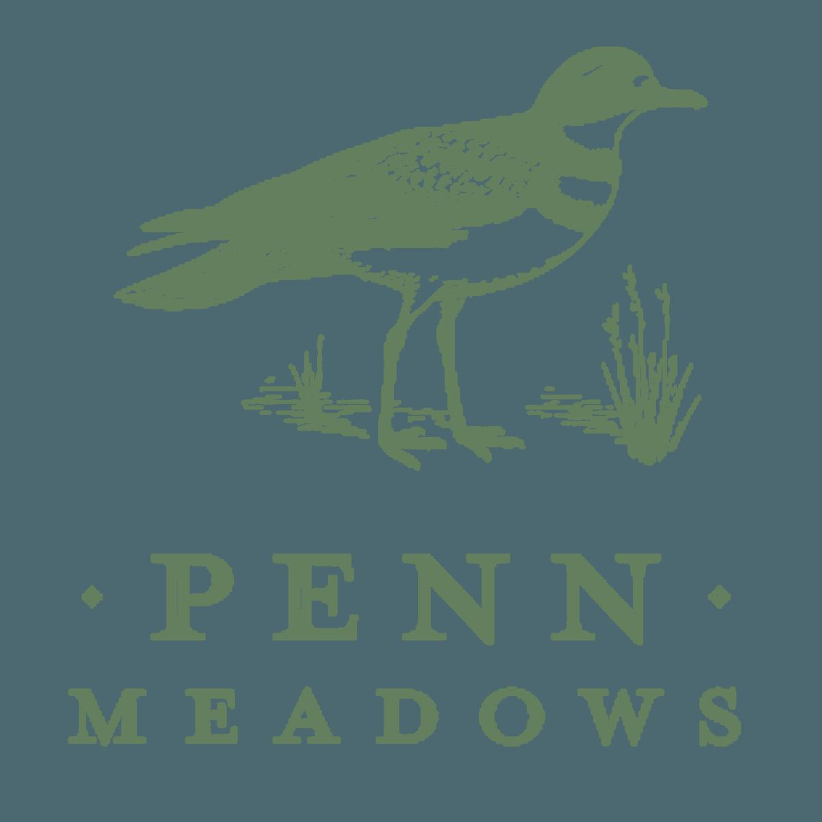 Penn Meadows