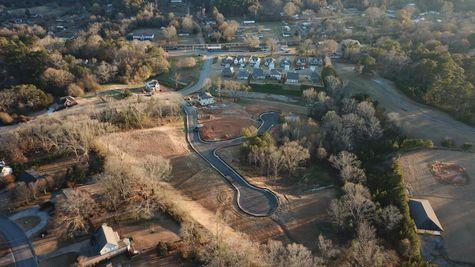 Springville Photo-43