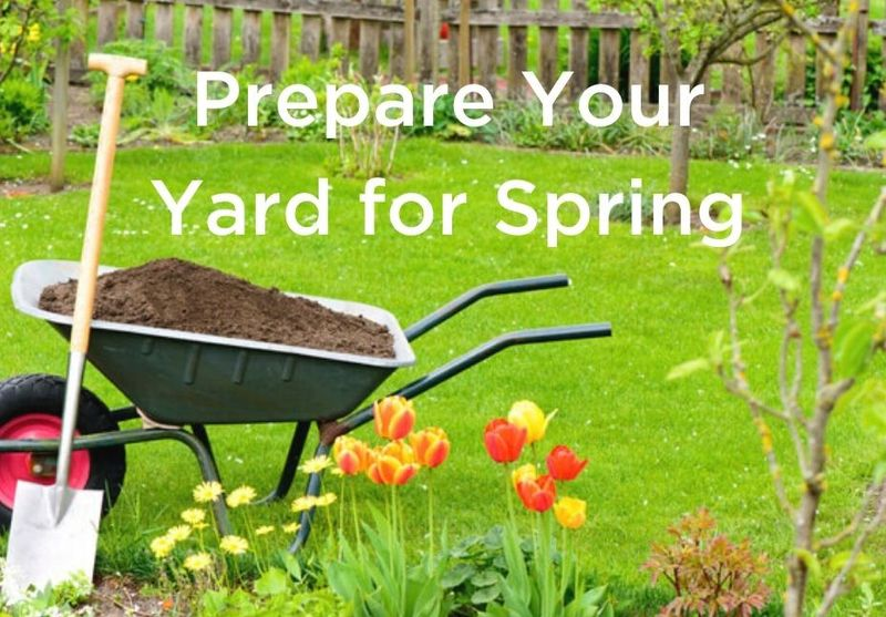 Four Ways to Prepare Your Yard for Spring
