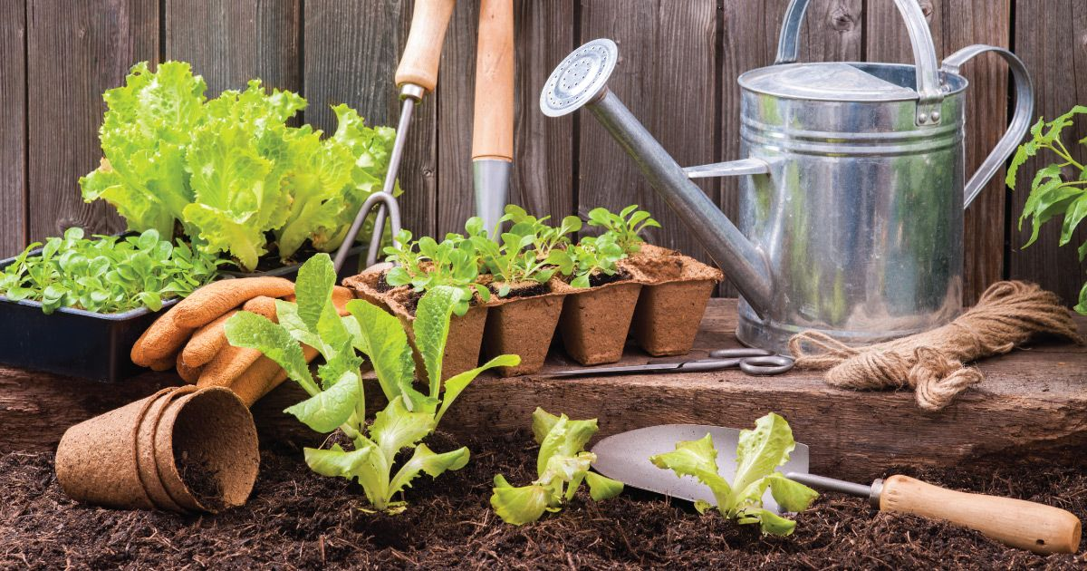 8 Must-Have Garden Tools for 2020