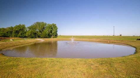 Stocked Pond in Frisco Ridge