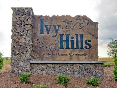 Ivy Hills