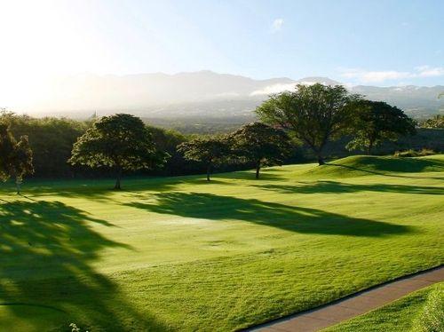 A rolling golf course landscape.