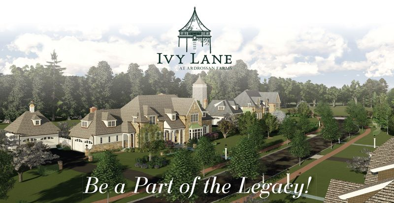 Aerial view of tree lined street at Ivy Lane in Villanova showing rooftops of homes and road