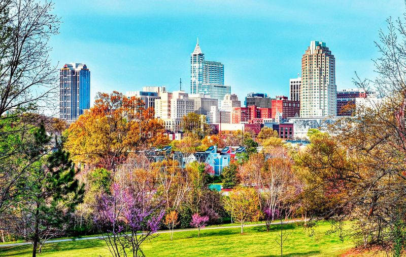 Raleigh NC skyline with buildings and trees
