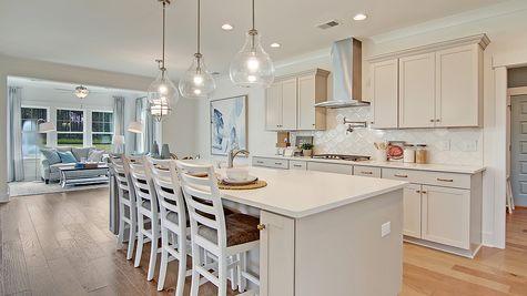 Kitchen | Webster Plan