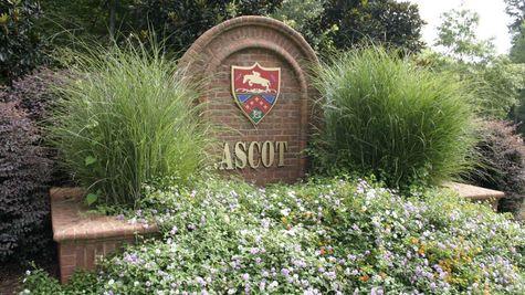 Ascot Woods Entrance