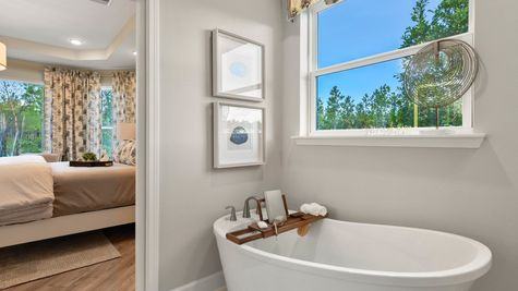 Jackson Model Home - Owners Spa Bath 3