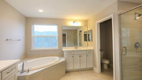 The Alexander at Lot 220 in Heritage Trace Owner's Bath
