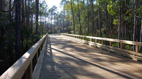 Nocatee Preserve Trail