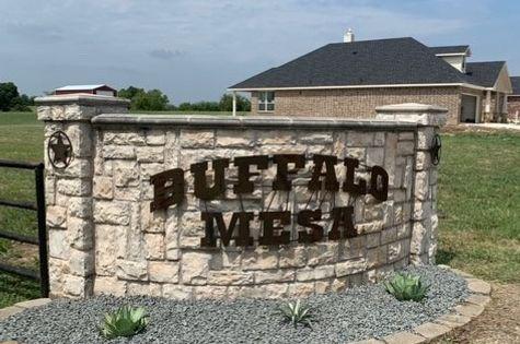 Buffalo Mesa