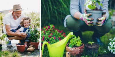 Two image collage. Image on left is of child planting garden with their grandfather. Image on right is of person holding a potted plant.